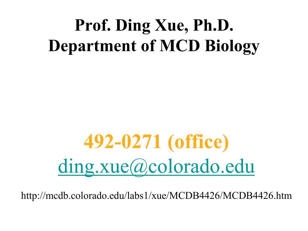 Prof. Ding Xue, Ph.D.