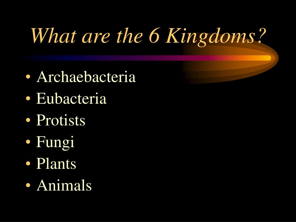 What are the 6 Kingdoms?