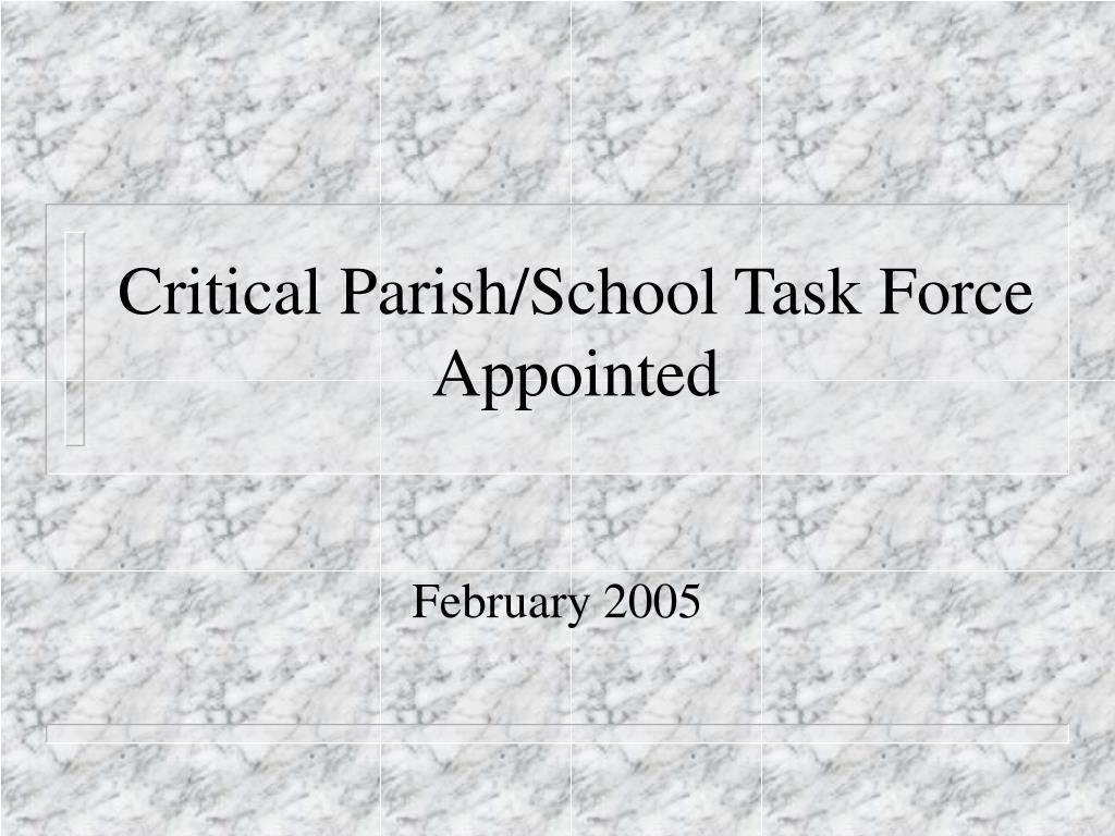 Critical Parish/School Task Force Appointed