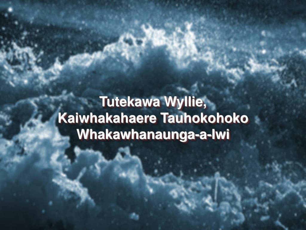 Tutekawa Wyllie, Kaiwhakahaere Tauhokohoko Whakawhanaunga-a-Iwi