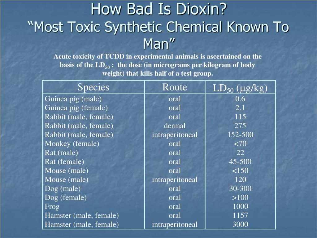 How Bad Is Dioxin?