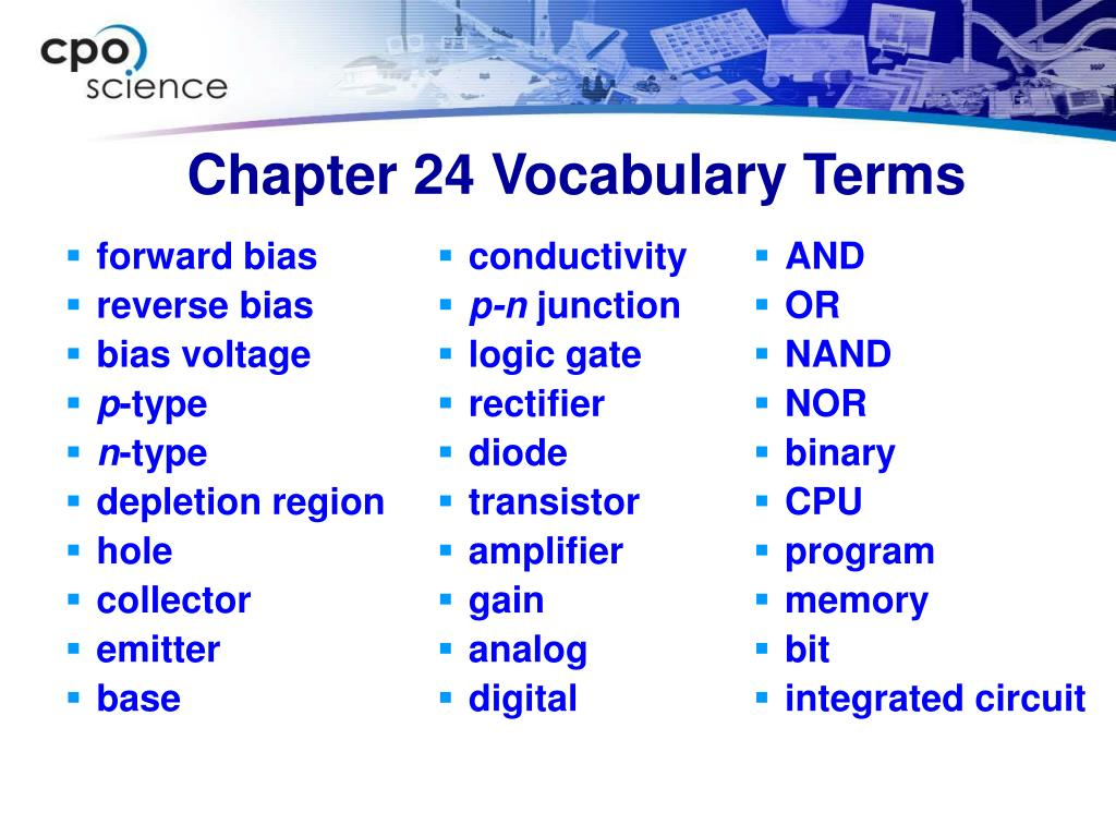 Chapter 24 Vocabulary Terms
