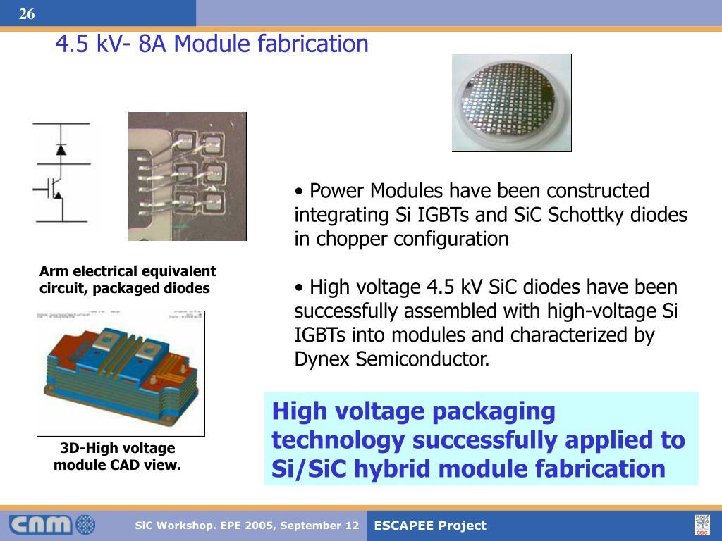4.5 kV- 8A Module fabrication