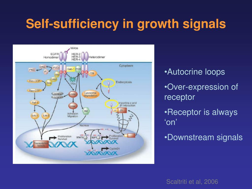 Self-sufficiency in growth signals