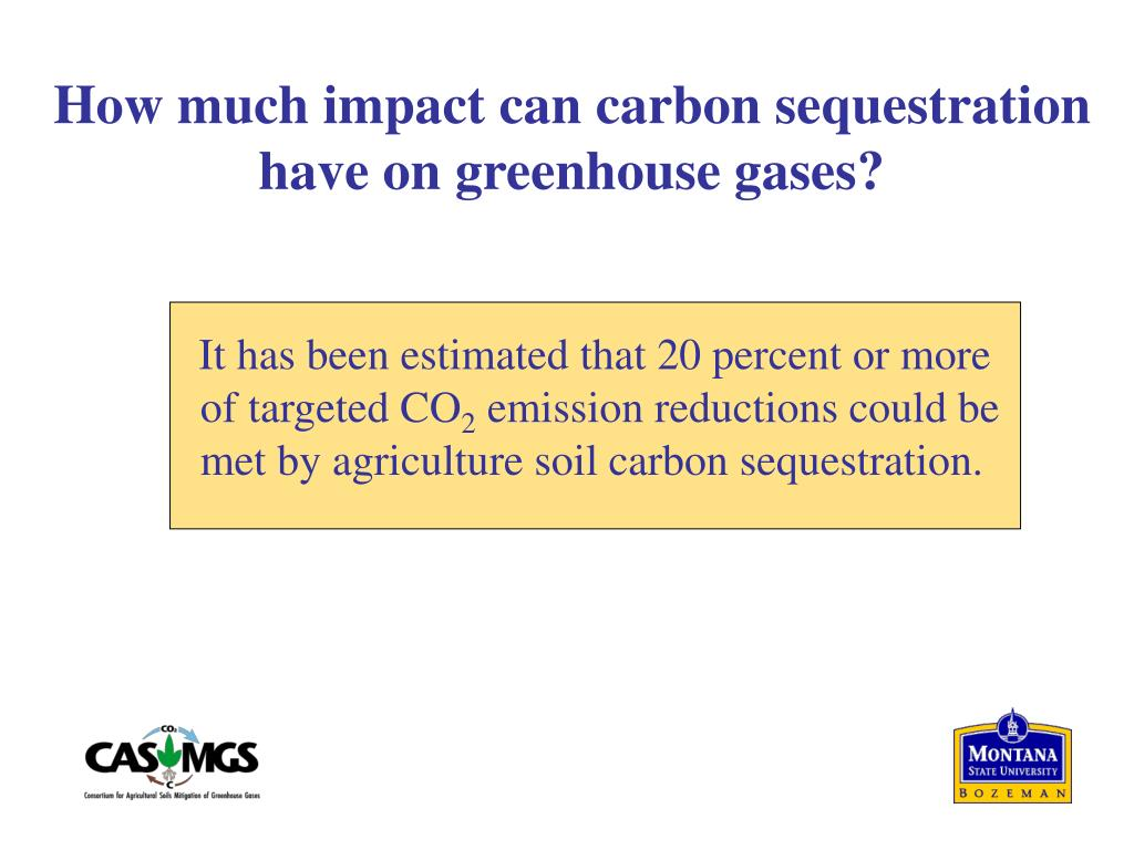 How much impact can carbon sequestration have on greenhouse gases?