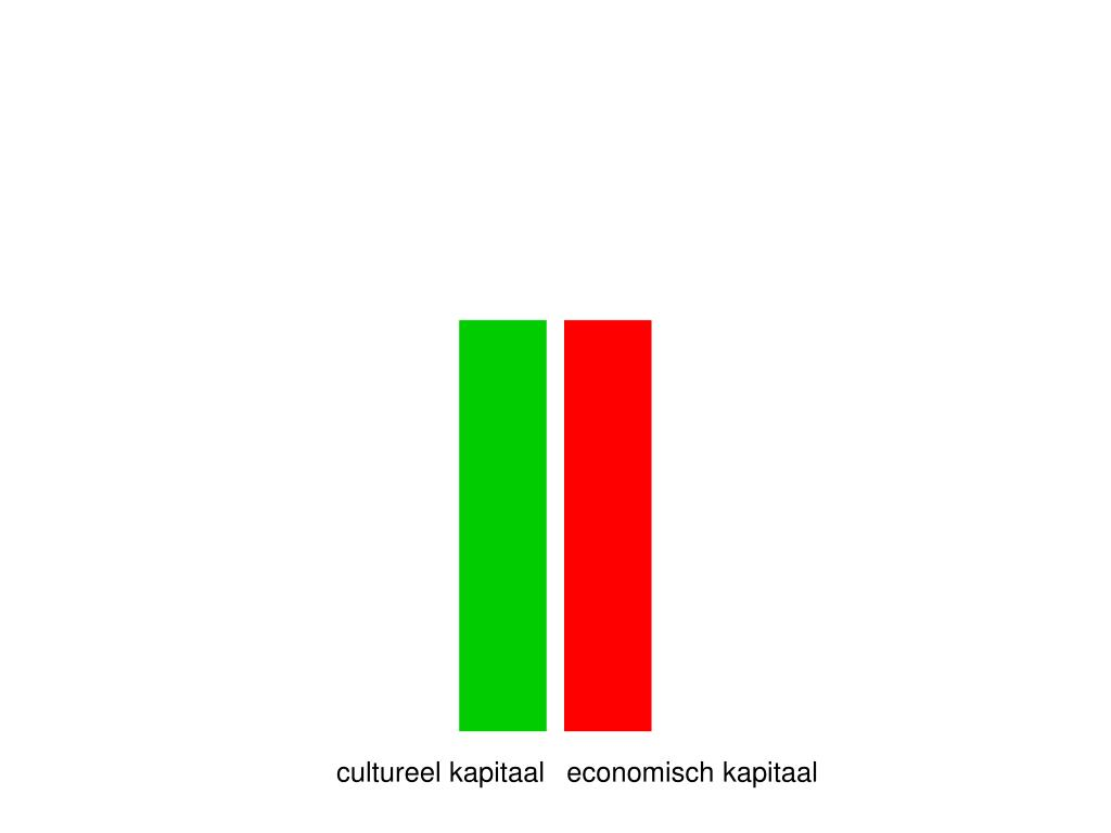 cultureel kapitaal