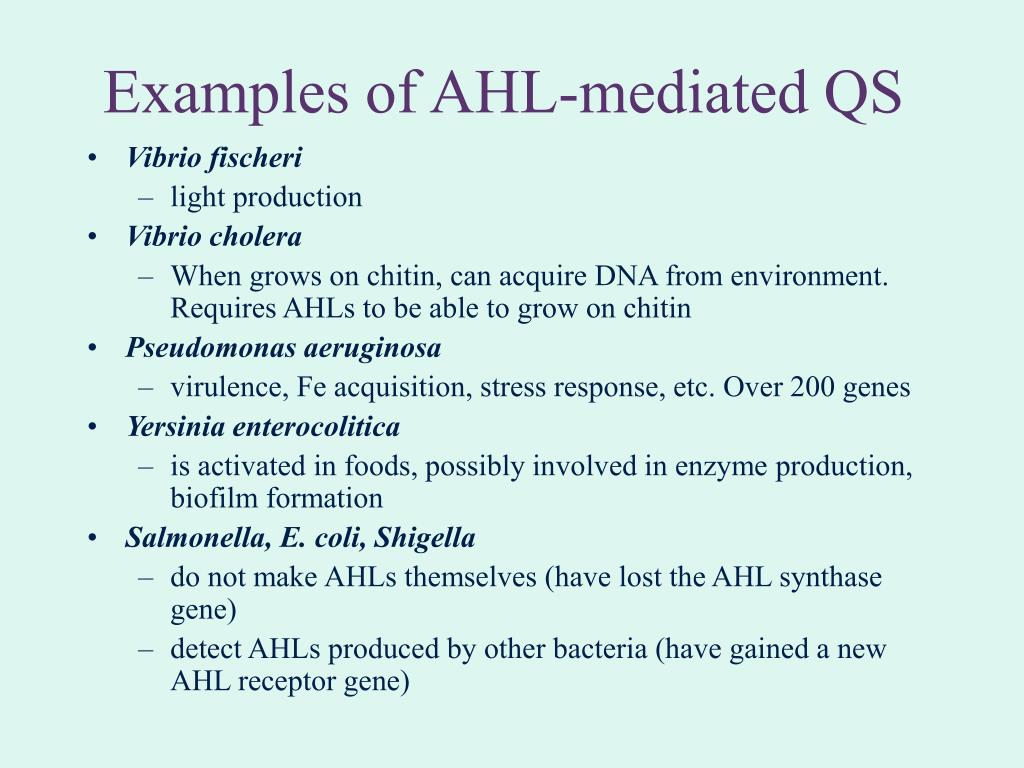 Examples of AHL-mediated QS