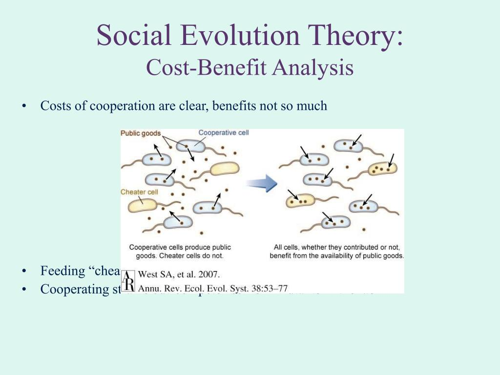 Social Evolution Theory: