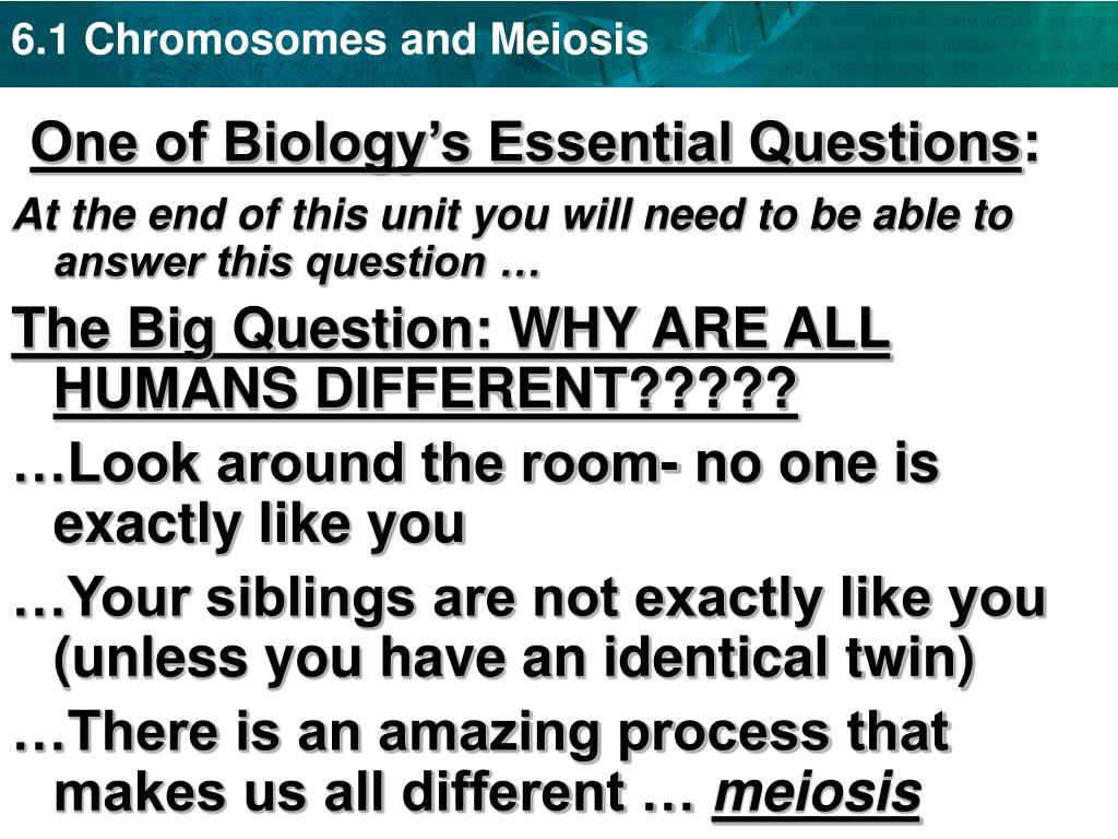 One of Biology's Essential Questions