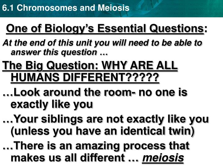 One of biology s essential questions