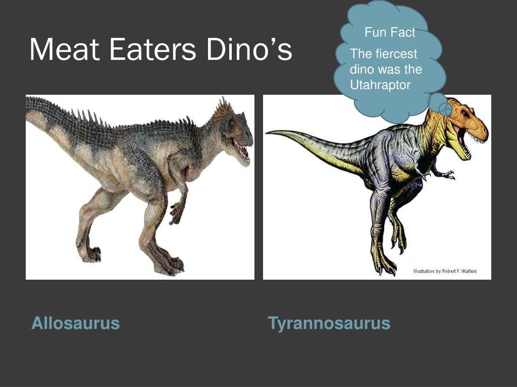 Meat Eaters Dino's