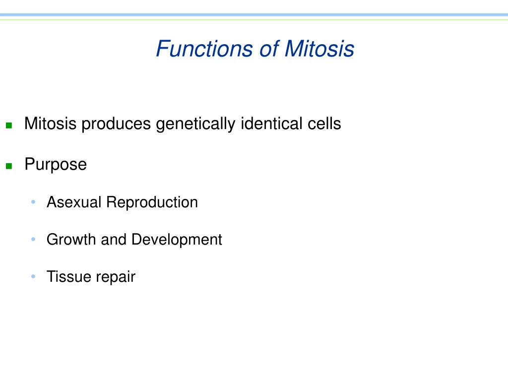 Functions of Mitosis