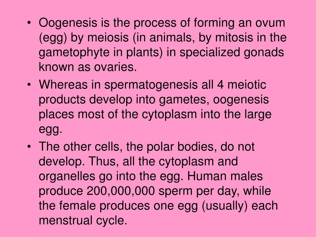 Oogenesis is the process of forming an ovum (egg) by meiosis (in animals, by mitosis in the gametophyte in plants) in specialized gonads known as ovaries.