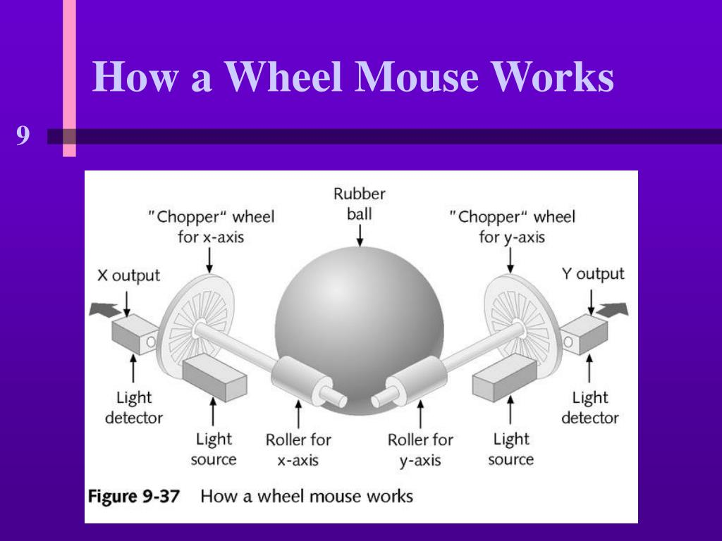 How a Wheel Mouse Works