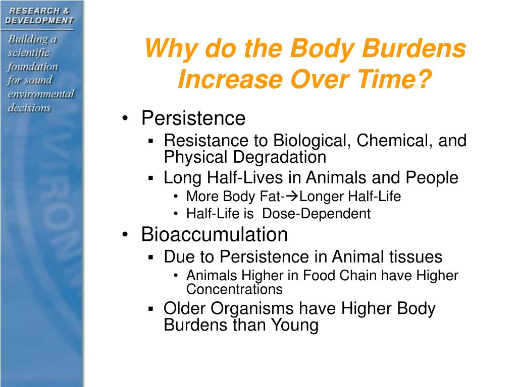 Why do the Body Burdens Increase Over Time?