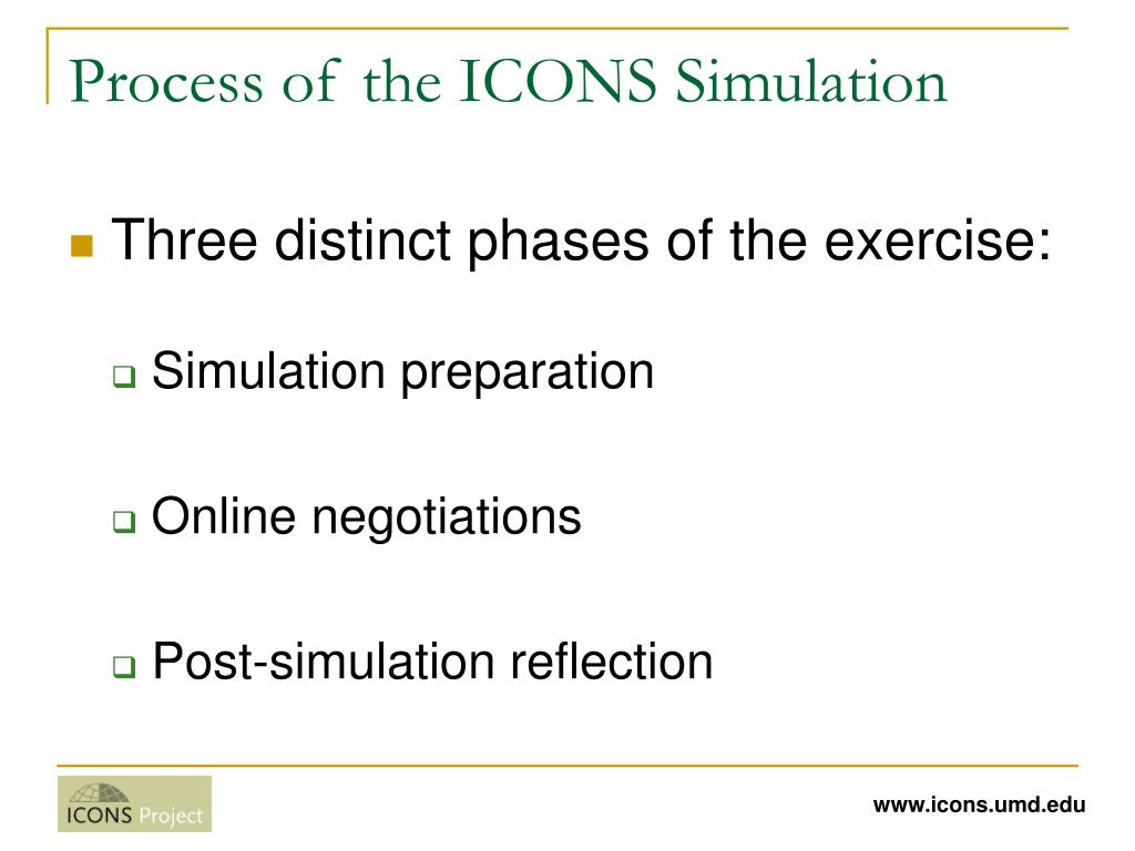 Process of the ICONS Simulation