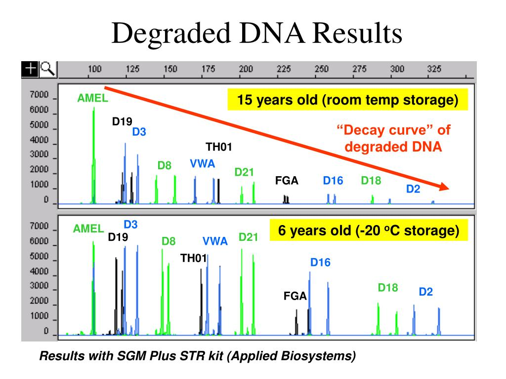 """Decay curve"" of degraded DNA"