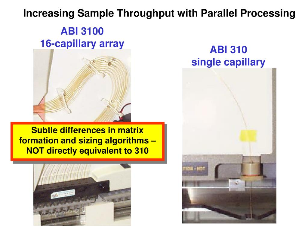 Increasing Sample Throughput with Parallel Processing