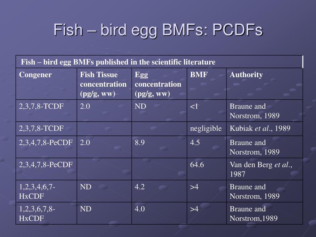 Fish – bird egg BMFs: PCDFs
