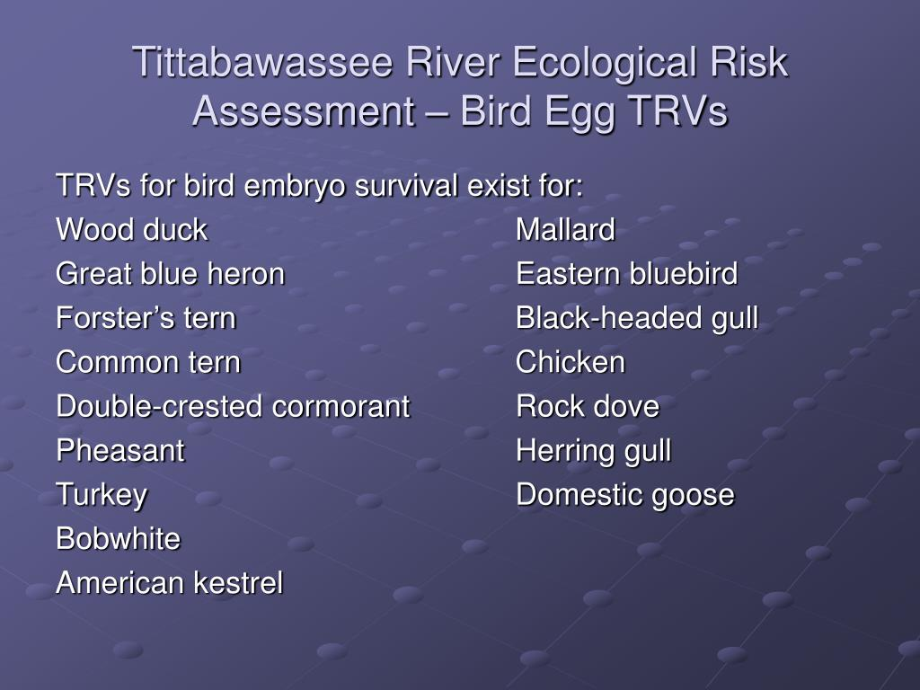 Tittabawassee River Ecological Risk Assessment – Bird Egg TRVs
