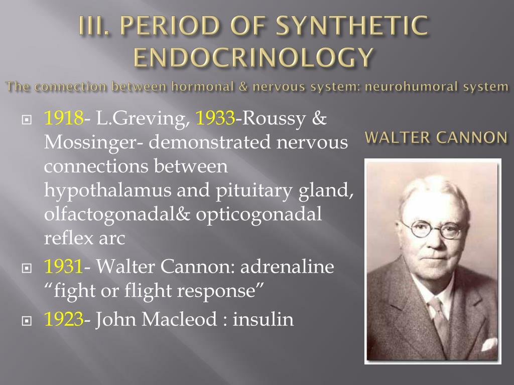 III. PERIOD OF SYNTHETIC ENDOCRINOLOGY