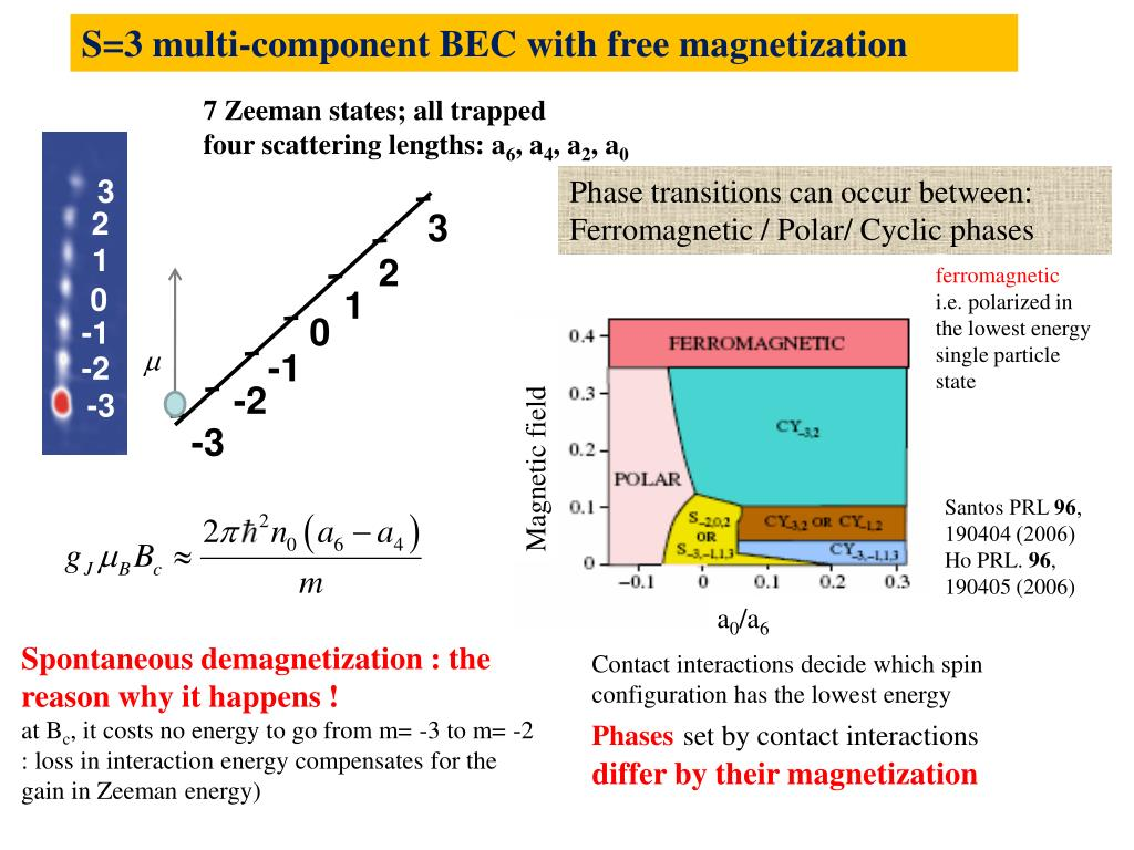 S=3 multi-component BEC with free magnetization