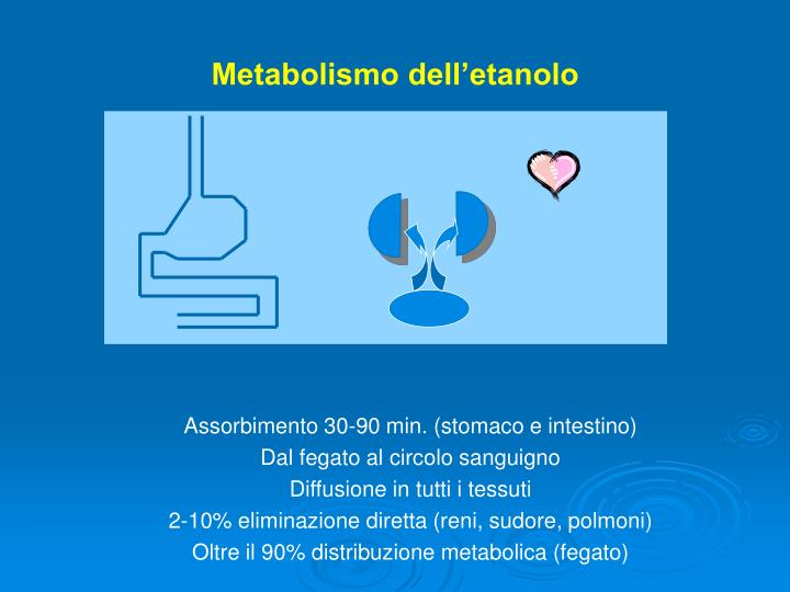 Metabolismo dell etanolo