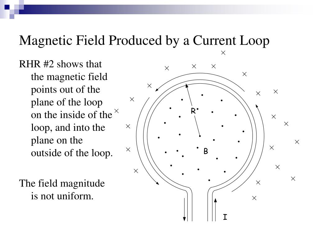 Magnetic Field Produced by a Current Loop