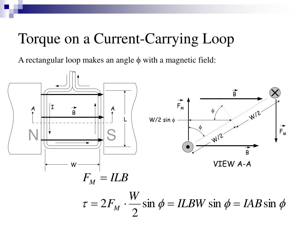 Torque on a Current-Carrying Loop