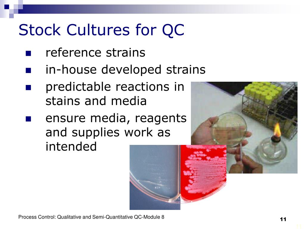 Stock Cultures for QC