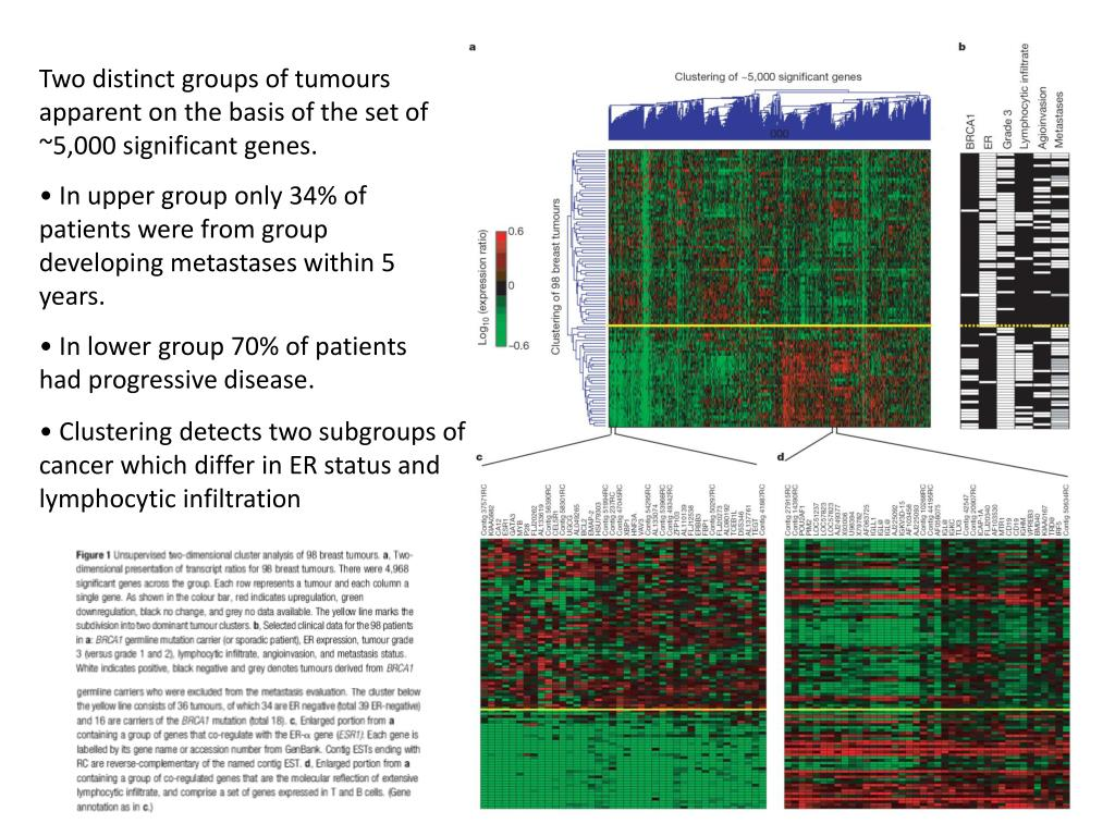 Two distinct groups of tumours apparent on the basis of the set of ~5,000 significant genes.