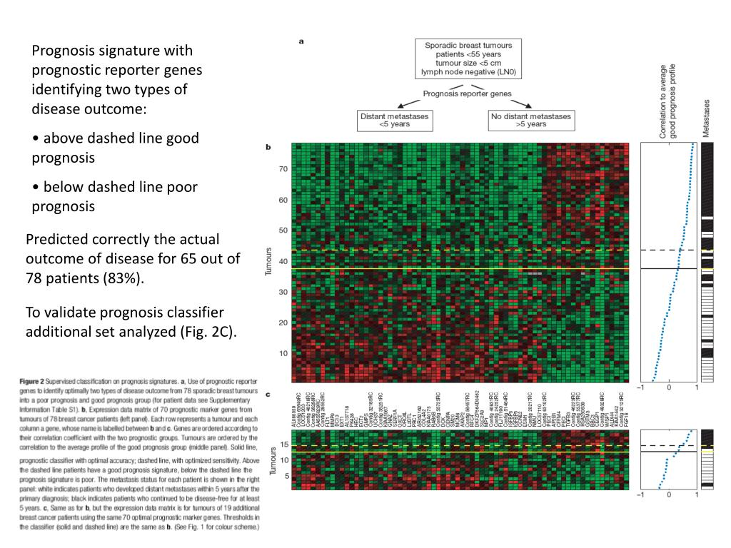 Prognosis signature with prognostic reporter genes identifying two types of disease outcome: