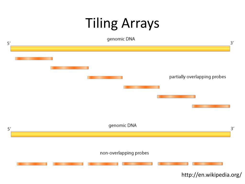 Tiling Arrays