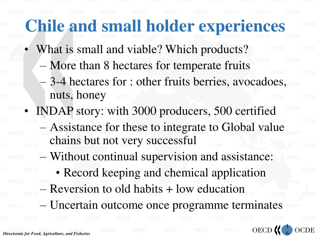 Chile and small holder experiences