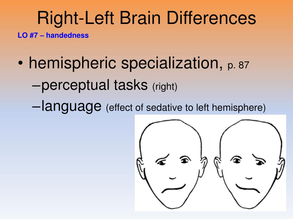 Right-Left Brain Differences