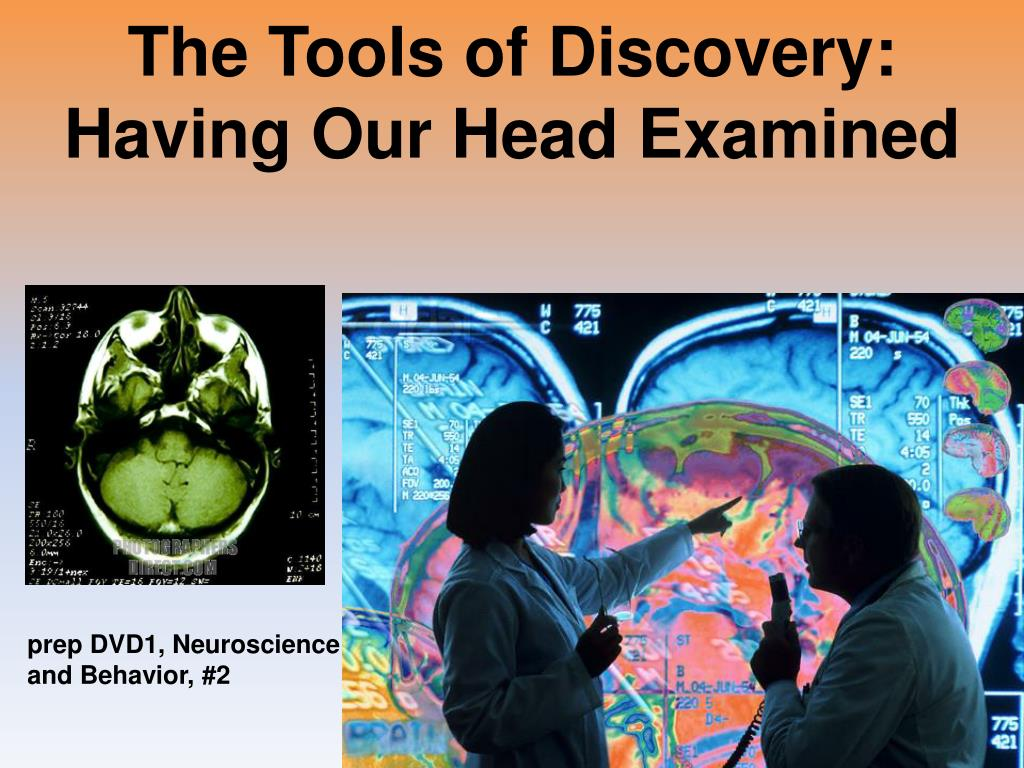 The Tools of Discovery: Having Our Head Examined