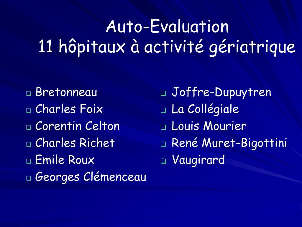 Auto-Evaluation