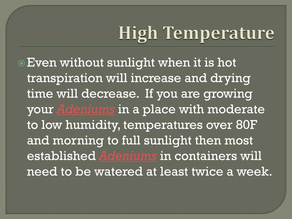 High Temperature
