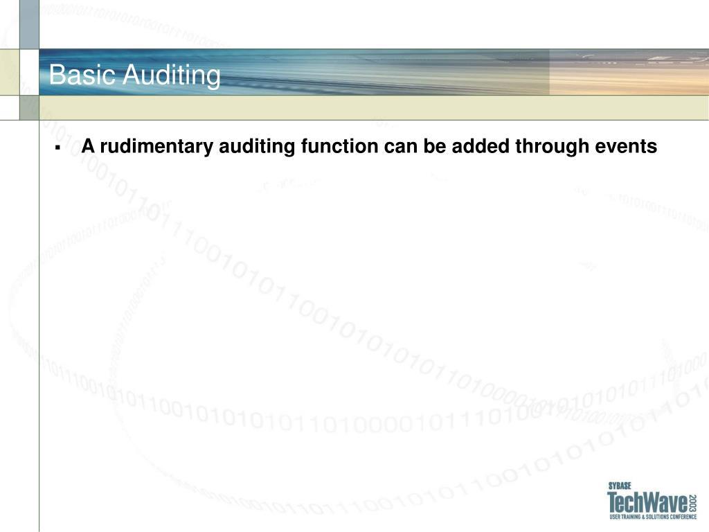 Basic Auditing