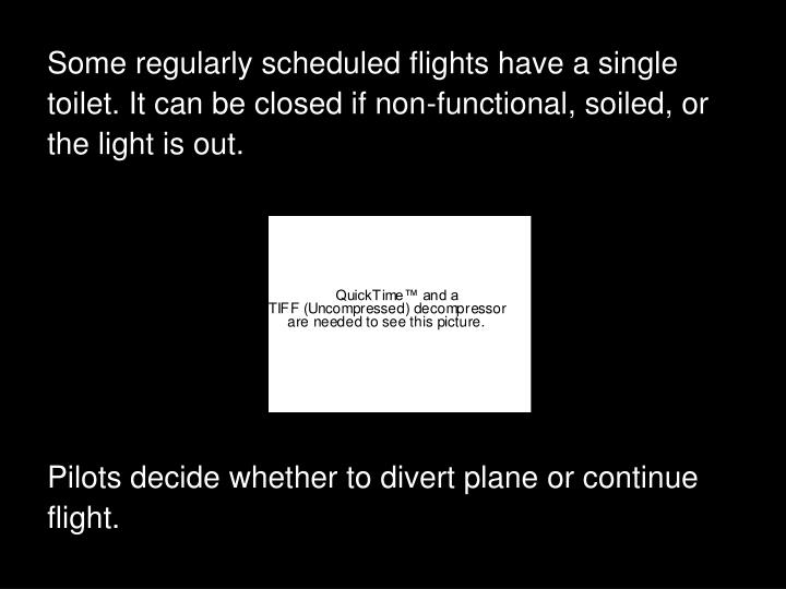 Some regularly scheduled flights have a single toilet. It can be closed if non-functional, soiled, or the light is out.