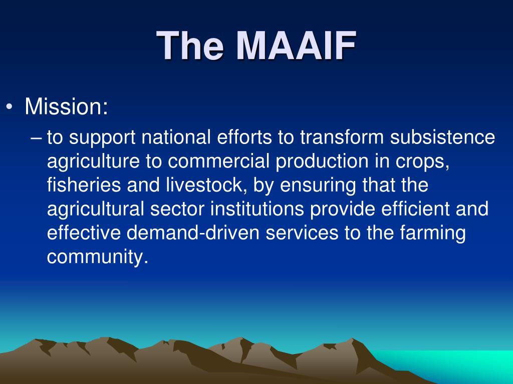 The MAAIF