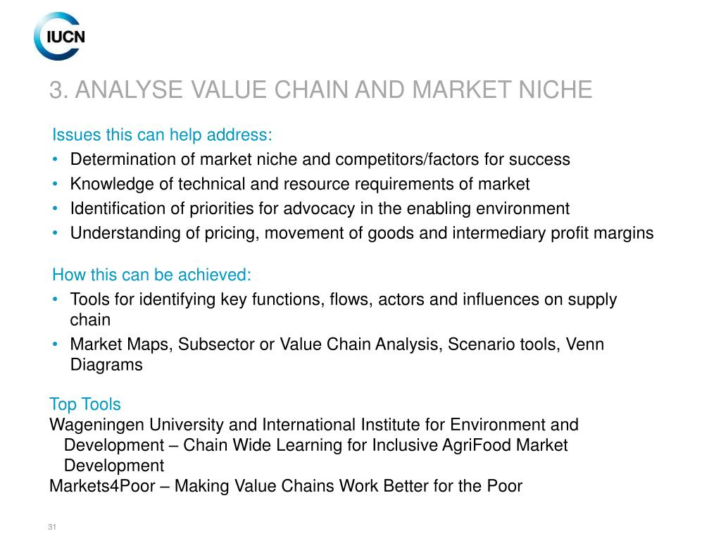 3. ANALYSE VALUE CHAIN AND MARKET NICHE