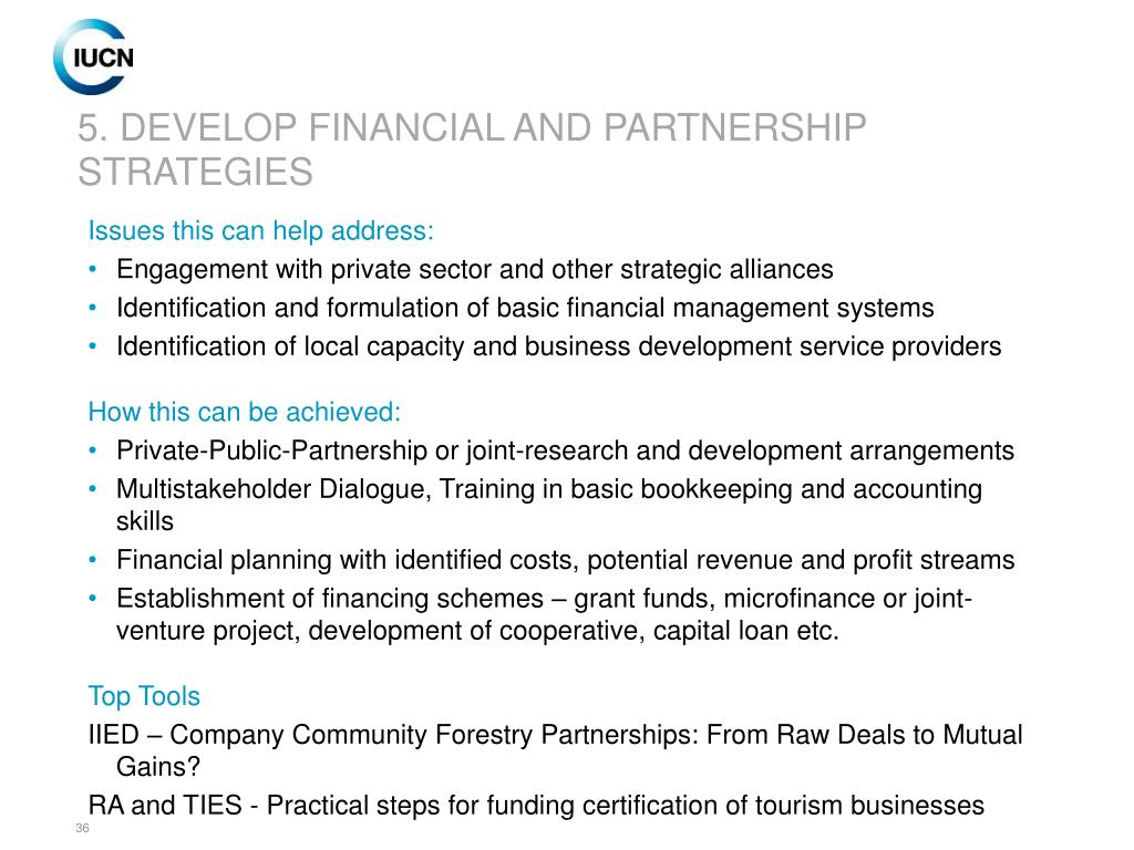 5. DEVELOP FINANCIAL AND PARTNERSHIP STRATEGIES