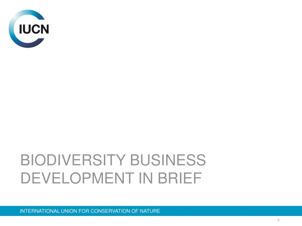 BIODIVERSITY BUSINESS DEVELOPMENT IN BRIEF