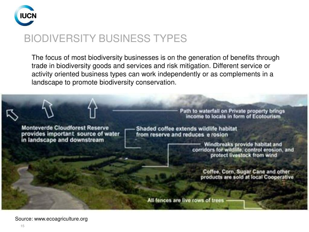 BIODIVERSITY BUSINESS TYPES