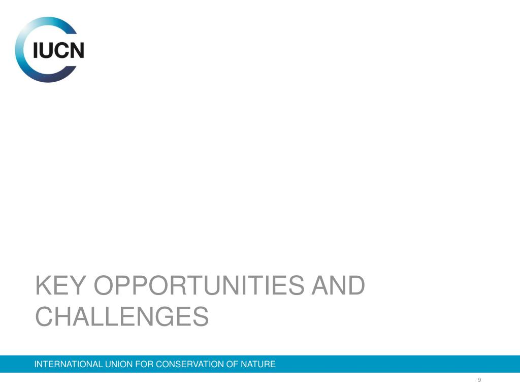 KEY OPPORTUNITIES AND CHALLENGES