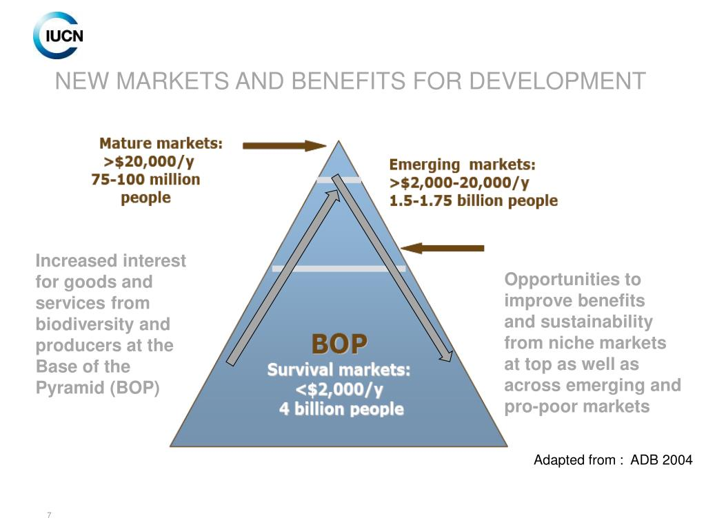 NEW MARKETS AND BENEFITS FOR DEVELOPMENT