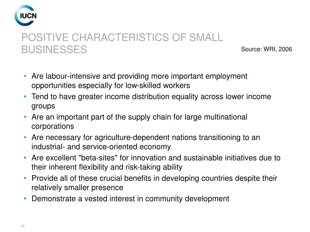 POSITIVE CHARACTERISTICS OF SMALL BUSINESSES