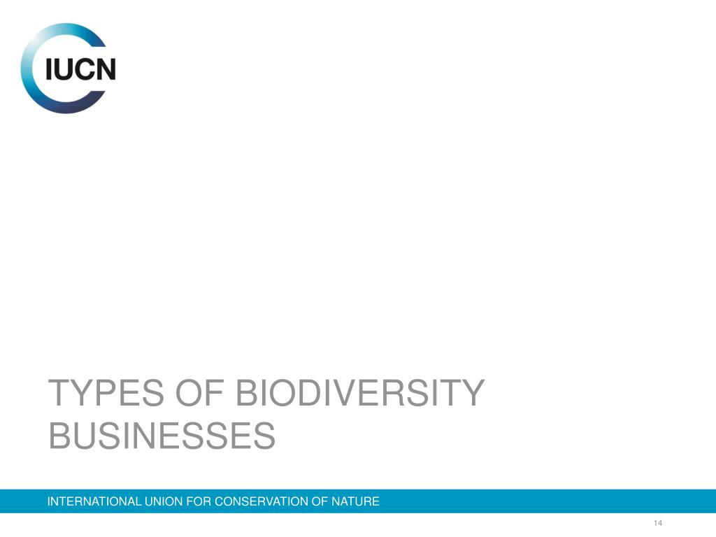 TYPES OF BIODIVERSITY BUSINESSES