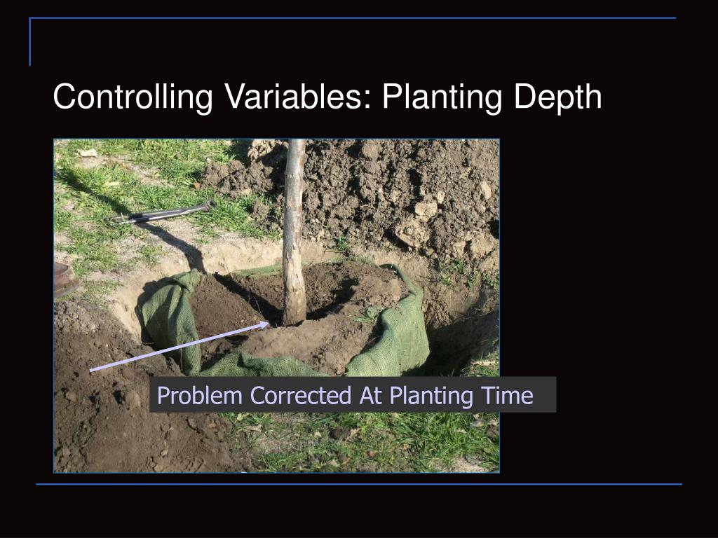 Controlling Variables: Planting Depth